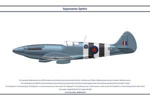 Spitfire Mk XIX GB 541 Sqn by WS-Clave
