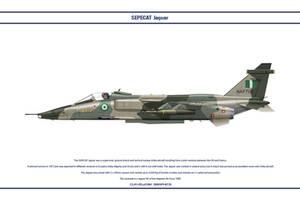 Jaguar Nigeria 1 by WS-Clave