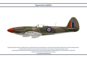 Spitfire Mk 22 Rhodesia 2 by WS-Clave
