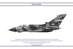 Tornado GB 14 Sqn 1 by WS-Clave