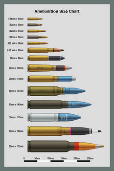 Ammunition Size Chart by WS-Clave