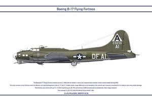 B-17 USA 91st Bomb Group 3 by WS-Clave