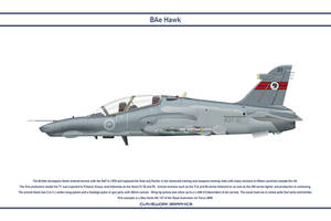 Hawk Australia 1