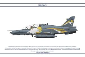 Hawk Malaysia 2 by WS-Clave