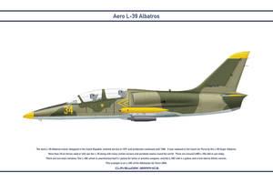 L-39 Abkhazia 1