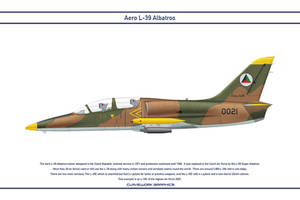 L-39 Afghanistan 1