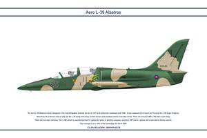 L-39 Cambodia 1