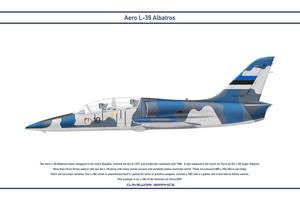 L-39 Estonia 1