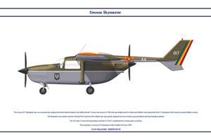 Cessna 337 Chad