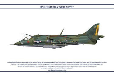 Harrier USA VMA-542 1 by WS-Clave