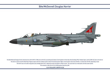 Harrier GB 800 Squadron 3 by WS-Clave