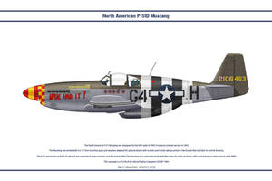 Mustang USAAF 362nd FS 1 by WS-Clave