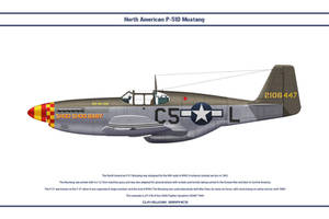 Mustang USAAF 364th FS 1 by WS-Clave