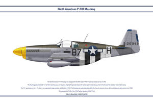 Mustang USAAF 374th FS 1 by WS-Clave