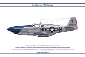 Mustang USAAF 487th FS 1 by WS-Clave