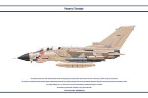 Tornado GB 20 Sqn 1 by WS-Clave