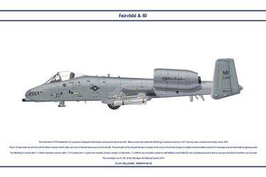 A-10 Michigan ANG