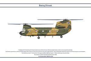 Chinook Australia 2