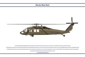 Black Hawk USA 1 by WS-Clave