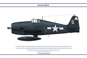 Hellcat USA VF-14 by WS-Clave