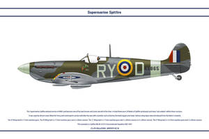 Spitfire Mk V GB 313 Sqn by WS-Clave