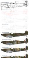 Spitfire Mk II Process