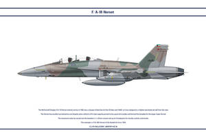 Hornet Kuwait 2 by WS-Clave