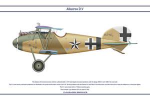 Albatros DV Jasta 61 1 by WS-Clave