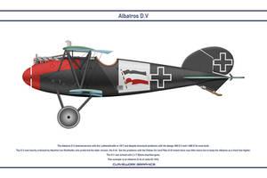 Albatros DV Jasta 62 1 Dev by WS-Clave