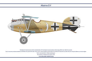 Albatros DV Jasta 71 1 by WS-Clave