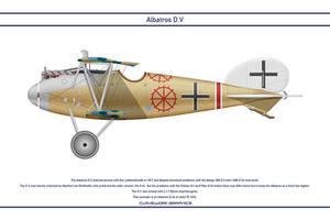 Albatros DV Jasta 75 1 by WS-Clave