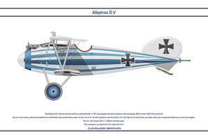 Albatros DV Jasta 76b 1 by WS-Clave