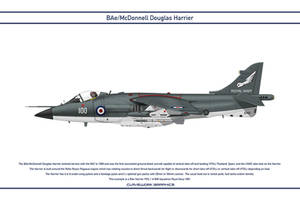 Harrier GB 899 Squadron 2 by WS-Clave