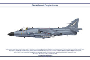 Harrier GB 899 Squadron 3 by WS-Clave