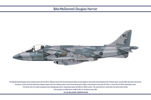 Harrier USA VMA-311 1 by WS-Clave