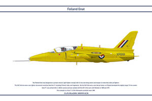 Gnat GB Yellowjacks 1 by WS-Clave