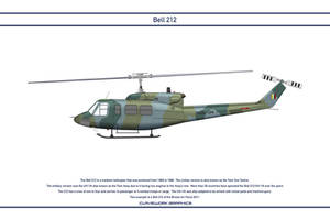 Bell 212 Brunei 1 by WS-Clave