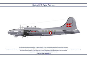 B-17 Denmark 1 by WS-Clave