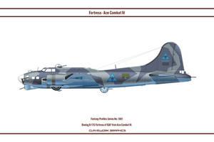 Fantasy 1001 B-17G ISAF by WS-Clave