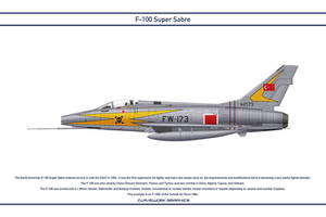 Super Sabre Turkey 1