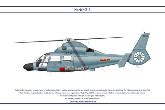 Z-9 China 1