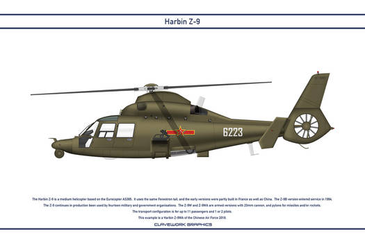Z-9 China 2