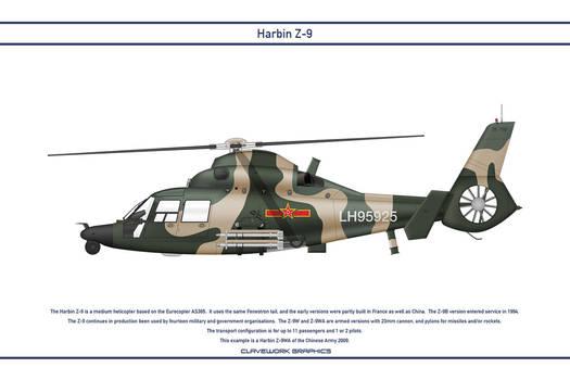 Z-9 China 3