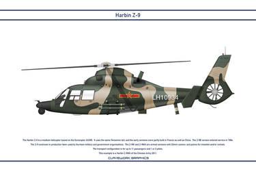Z-9 China 4