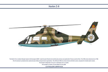 Z-9 Mali 1