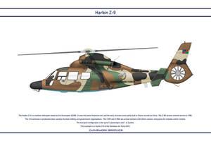 Z-9 Namibia 1