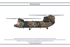 Chinook Spain 1