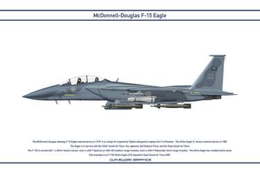 Eagle Saudi 92 Squadron 1