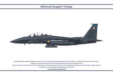 Eagle USA 334th Fighter Squadron 1