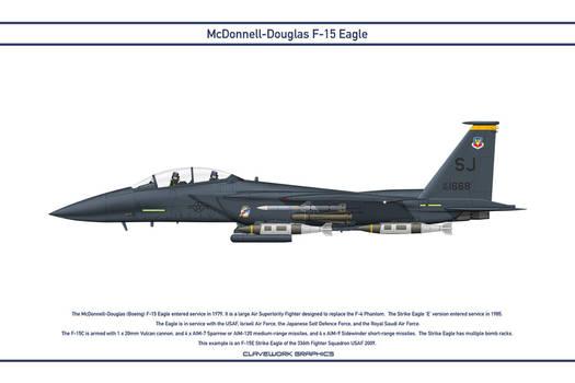 Eagle USA 336th Fighter Squadron 1